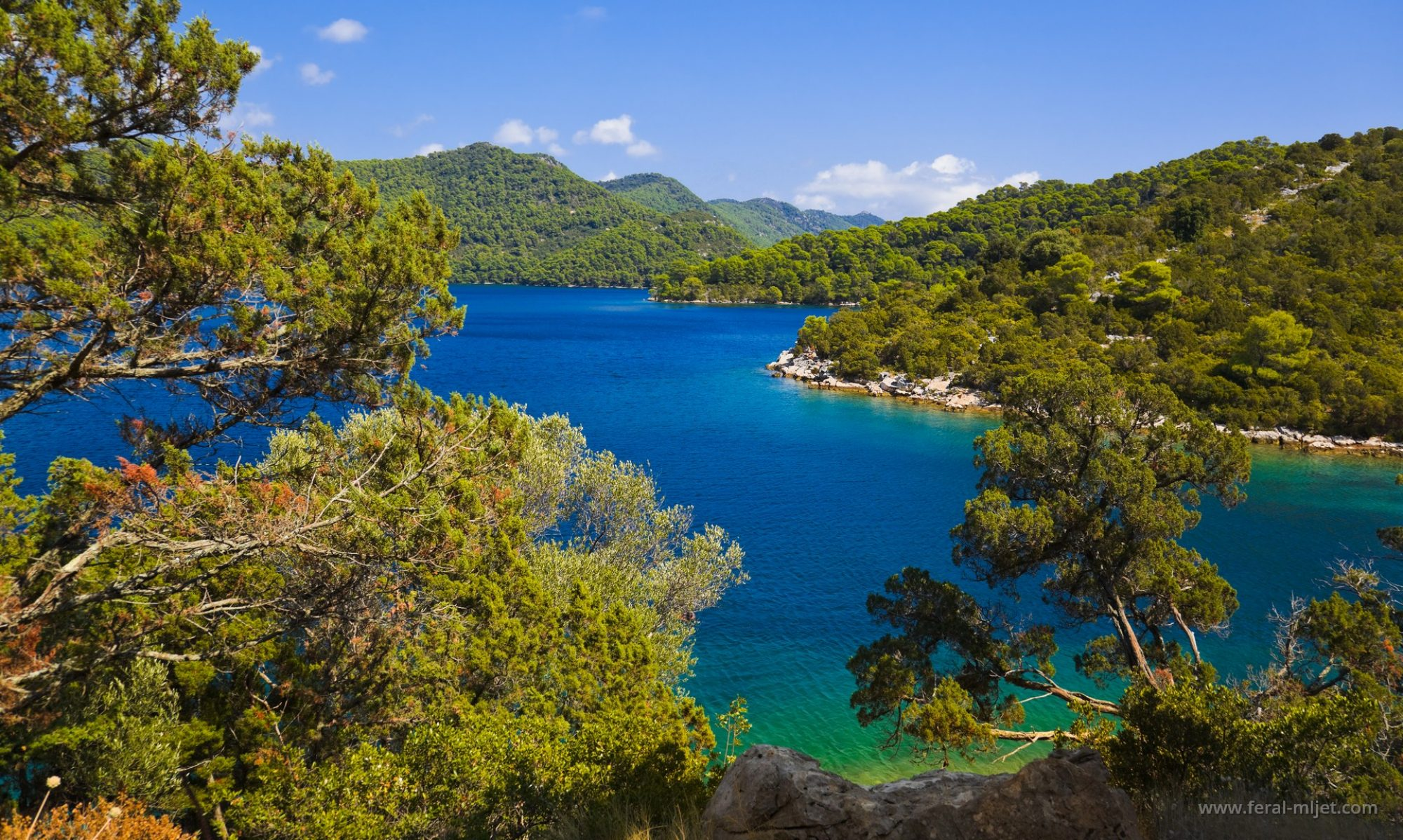 Feral Mljet apartments